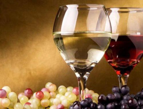 Verdicchio und Rosso Conero Weine